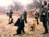 brit-fld-trl-5-dogs-on-peg-l