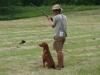 topbrass_pez_hunting
